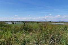 Laguna de Galisteo