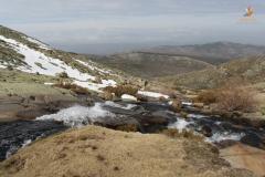 PN Sierra de Gredos, (Ávila)